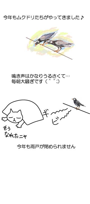 rakugaki_24.jpg